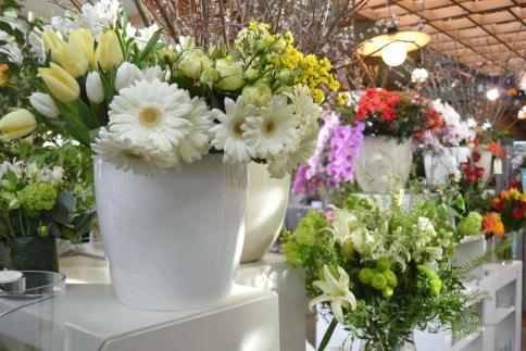 Florister a centre de jardineria la noguera tiendas for Jardineria la noguera